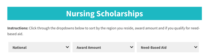 Nursing scholarship search engine