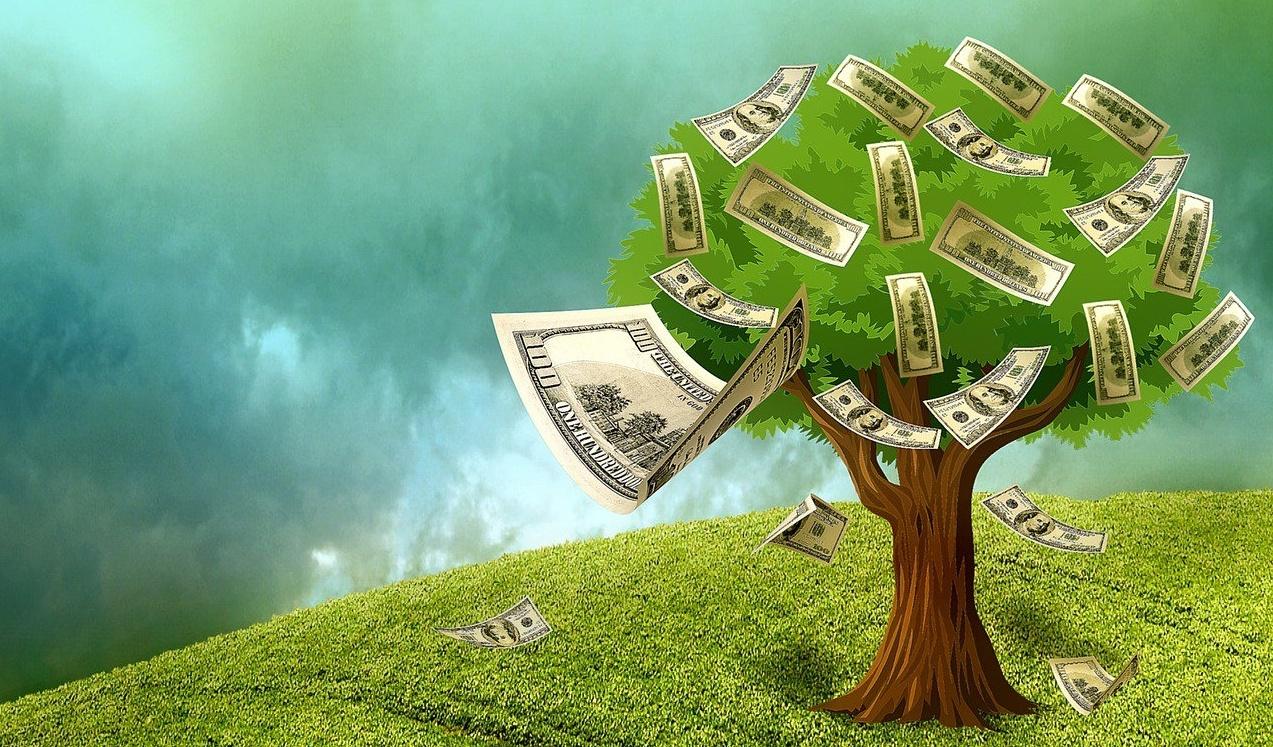 money grow on trees-371832-edited
